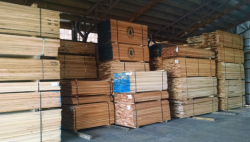 lumber & building materials auction